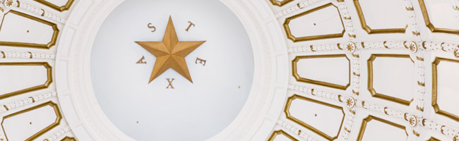 governmental relations header image
