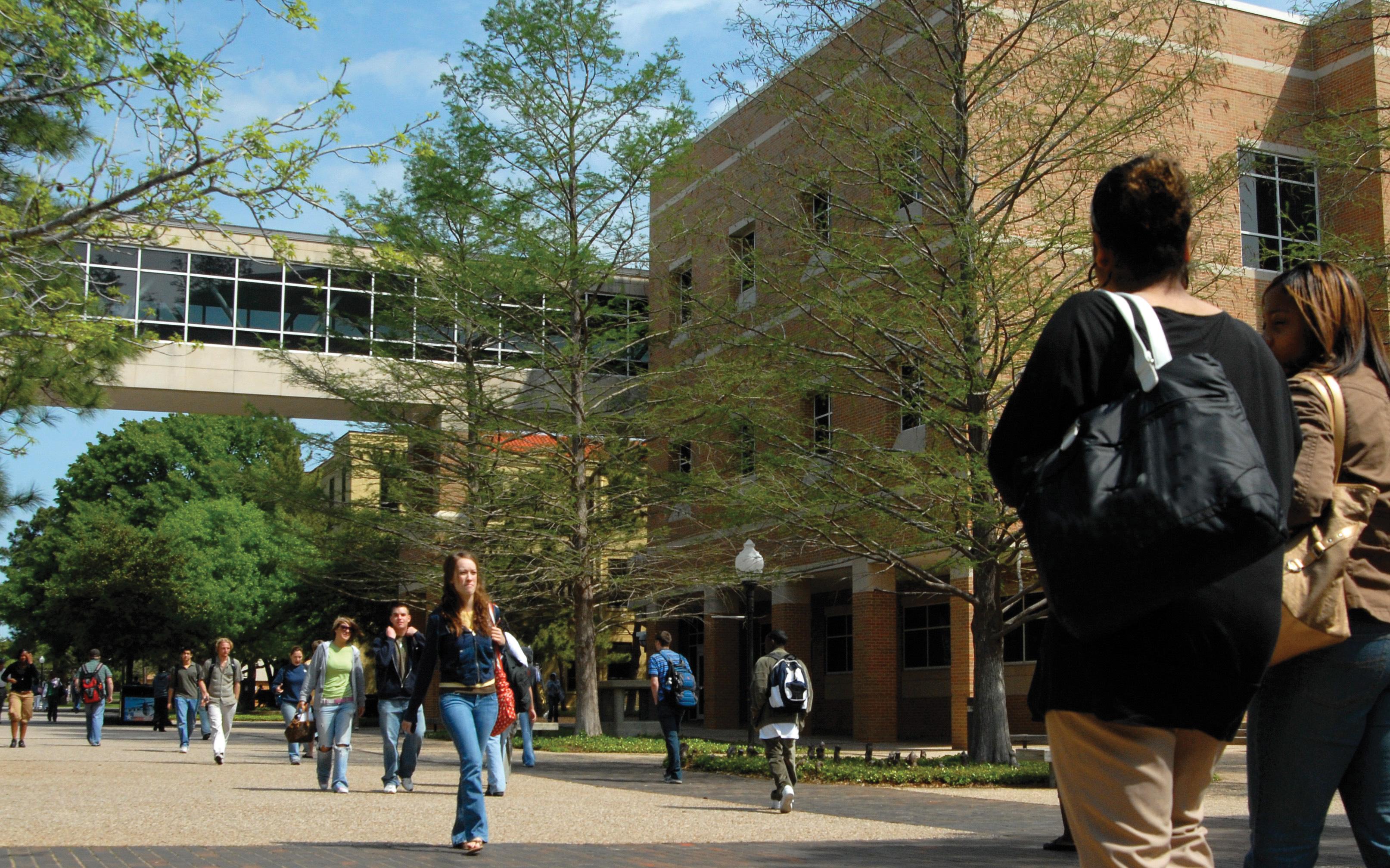 University of Texas for Arlington dating