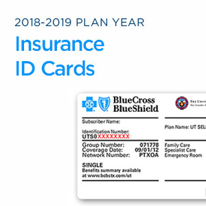 The Cards Year Plan Texas University Of For Id System 2018-2019 Insurance