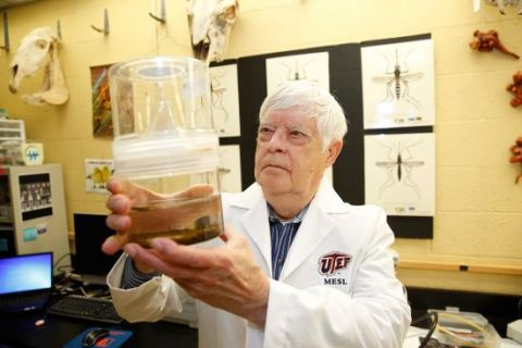 Doug Watts, Ph.D., who lead's The University of Texas at El Paso's Mosquito Ecology and Surveillance Laboratory, is tracking the aedes aegypti mosquito, which is known for spreading the Zika virus.